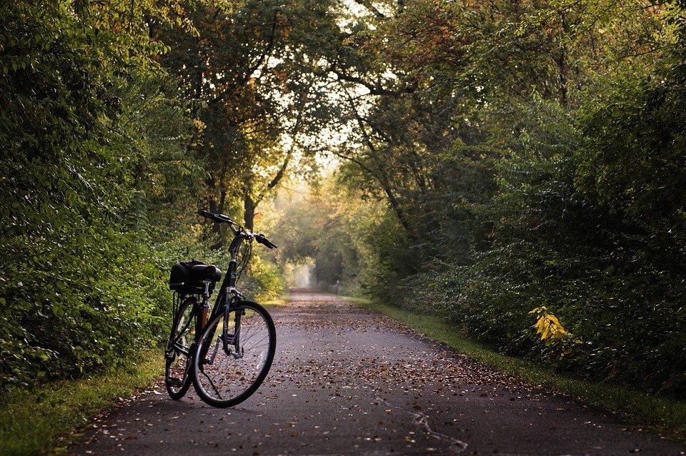 Jak zgodnie z prawem można przewozić rowery samochodem?